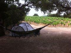 camping-2014-2.jpg